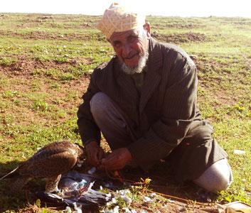 Caza con halcón en Marruecos